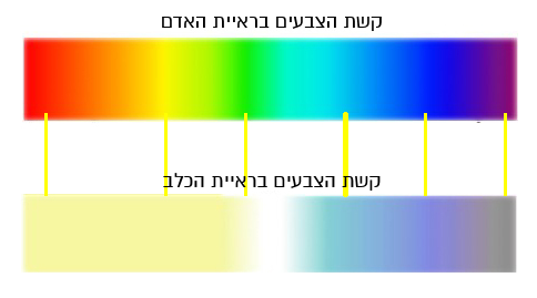 קשת הצבעים