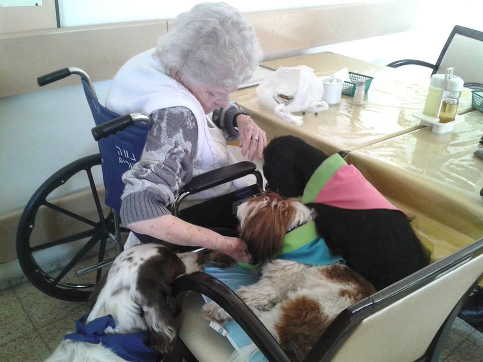 שני כלבים עם קשישה בבית אבות